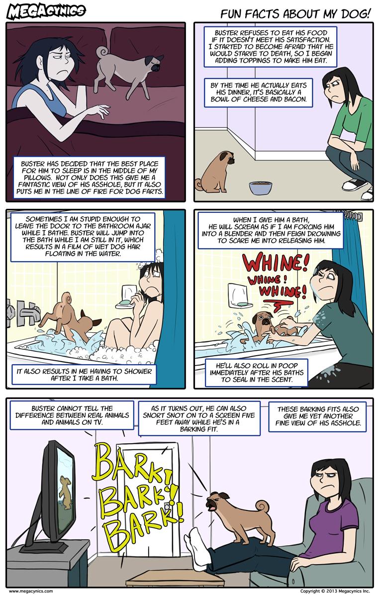 MegaCynics: Fun Facts About My Dog (May 13, 2013)